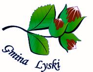 Strona Główna Gminy Lyski