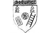 Logo Bogunice